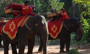 montar en elefante en angkor wat camboya